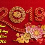 Hoa Hồng Makeup Chúc Xuân Kỷ Hợi 2019